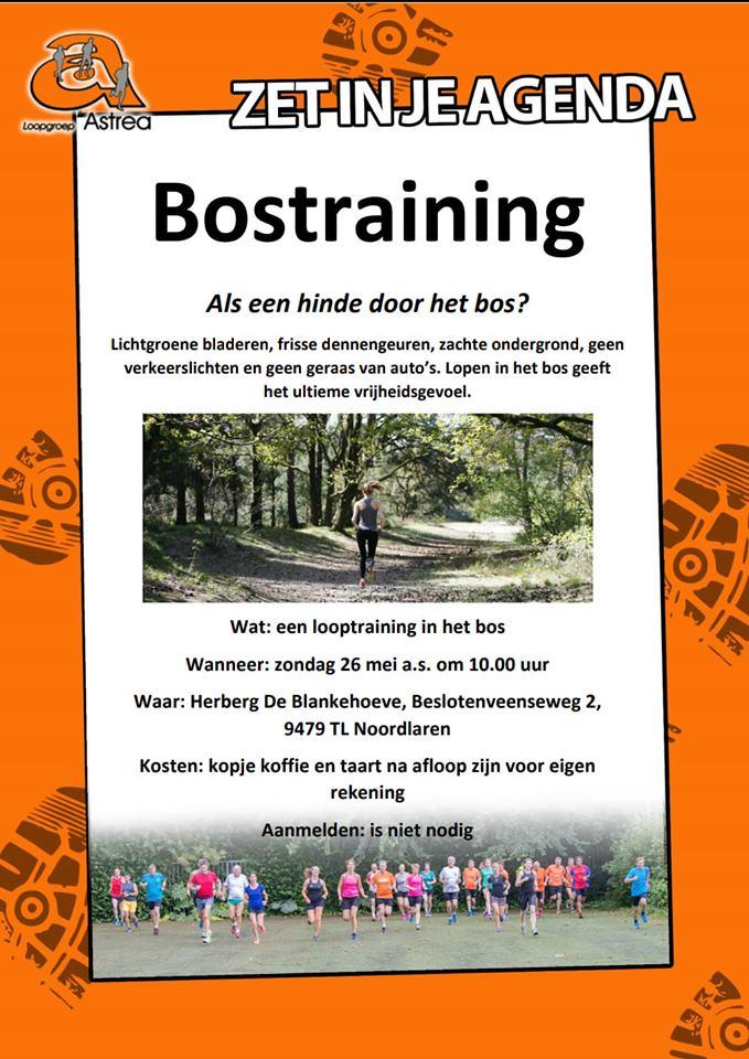 Bostraining